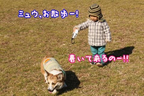 IMG_4128.jpg