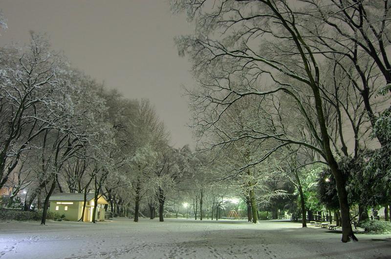 雪の下池1