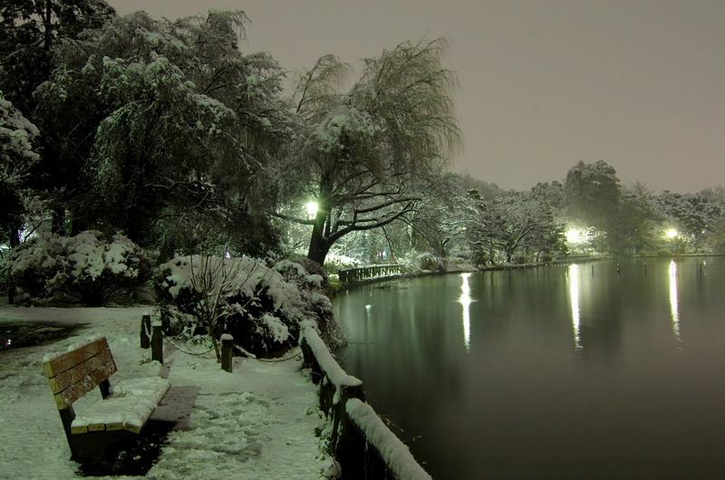 雪の上池2