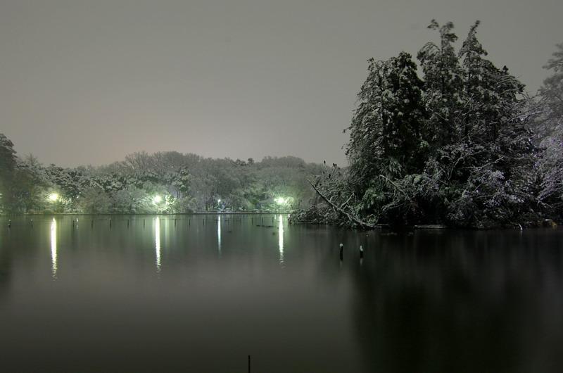 雪の上池1