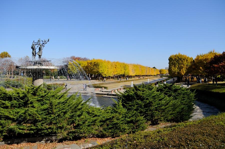 昭和記念公園__04