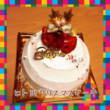 ヒト用ケーキ
