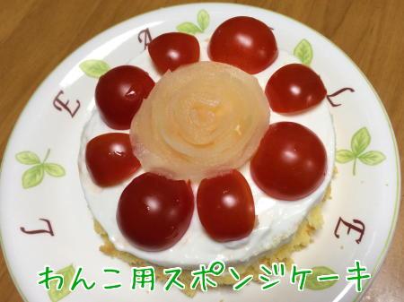わんこ用ケーキ2