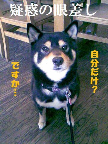 DCF_0007_20100216223638.jpg