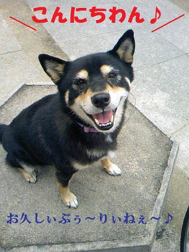 DCF_0007_20111022232554.jpg
