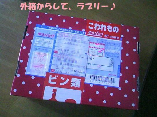 DCF_00081.jpg