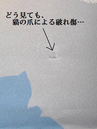DCF_0028_20100214222740.jpg