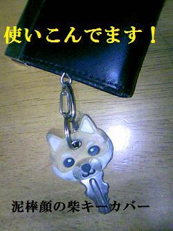DCF_0028_20100222181845.jpg