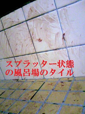 DCF_0032_20110316155037.jpg