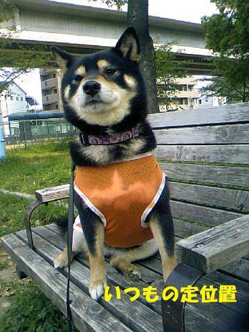 DCF_0037_20110526121423.jpg