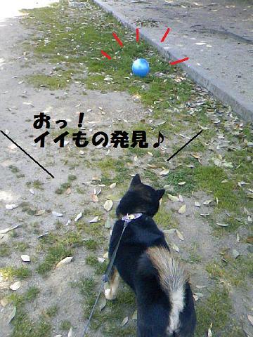 DCF_0062_20110422015831.jpg