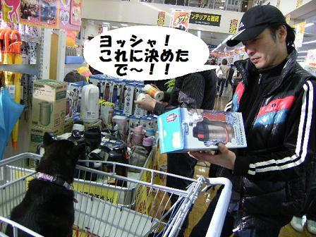 DSCF1526_20100319222748.jpg