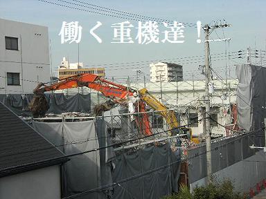 DSCF2463.jpg