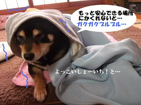DSCF2796_20110316164533.jpg