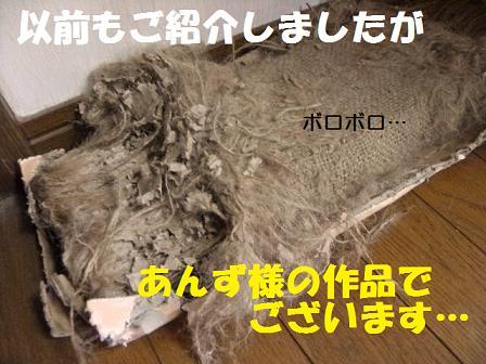DSCF2884_20110430000231.jpg