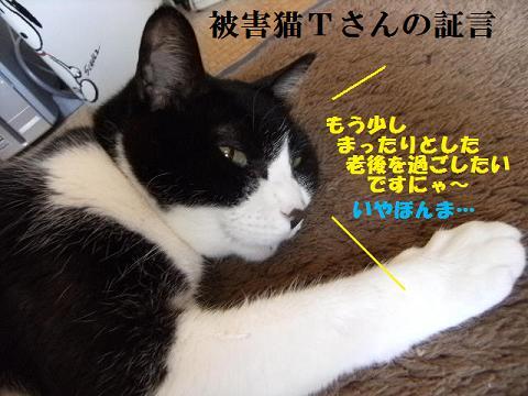 DSCF3002_20110616115310.jpg