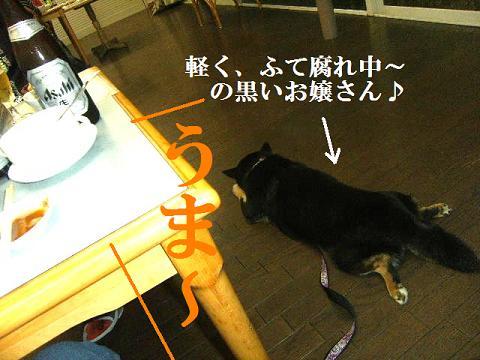 DSCF3110_20110608174343.jpg