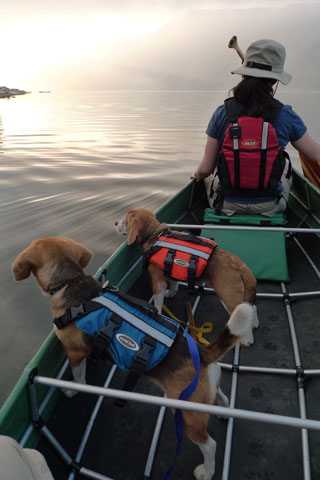 西湖カヌー翌朝1