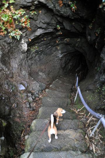 13巌門 洞窟