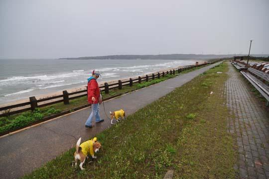 22海岸散歩