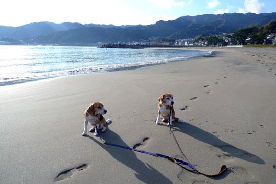 00砂浜散歩