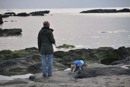 206海岸散歩