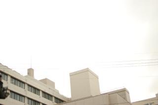 20110721-5.jpg