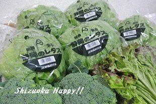 20131225shizuoka3.jpg