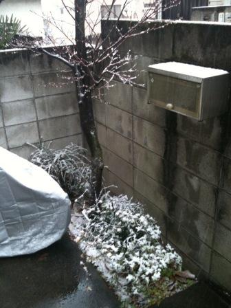 雪のアトリエ