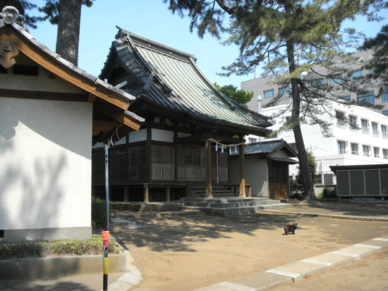 柳沢氷川神社17