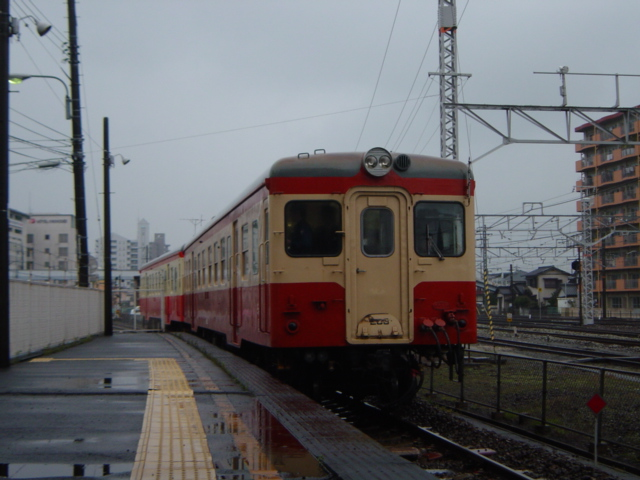 DSC06306.jpg