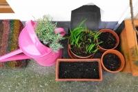 gardening11142