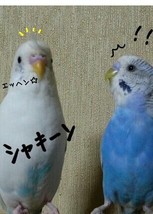 fc2_2013-12-19_22-34-58-860.jpg