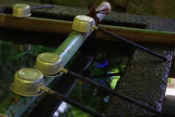 長谷寺手水に映る紫陽花