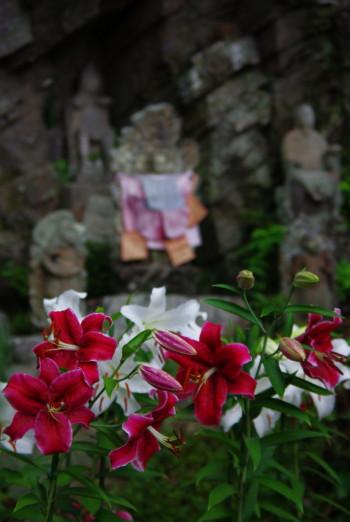 ゆり松尾寺4