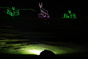 鹿のライト