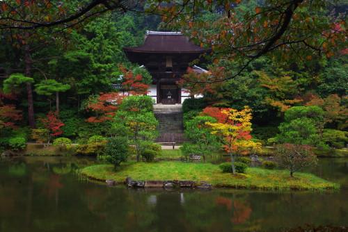 円城寺2011