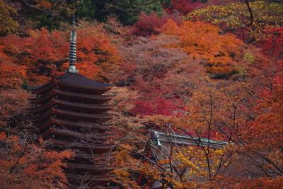 談山神社2009