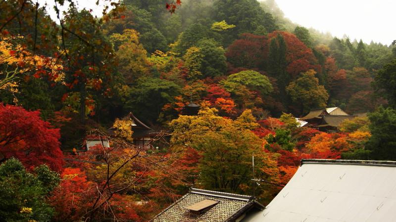 談山神社全景