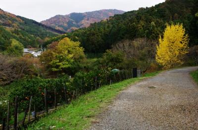 山之辺の道1