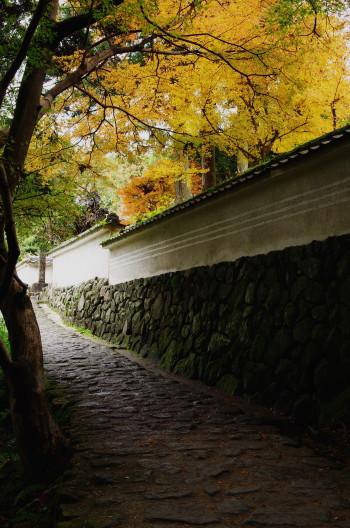 玄賓庵 山之辺の道4