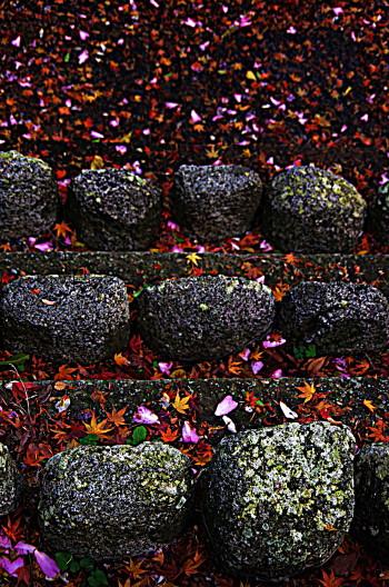 石仏に積もる落ち葉