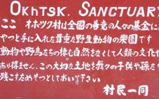 SCF0805.jpg