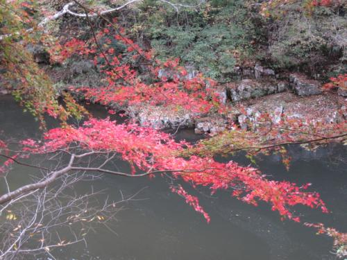 20111107奥津渓