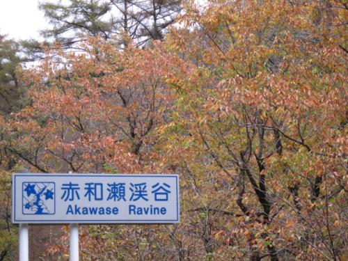 20111107赤和瀬渓谷
