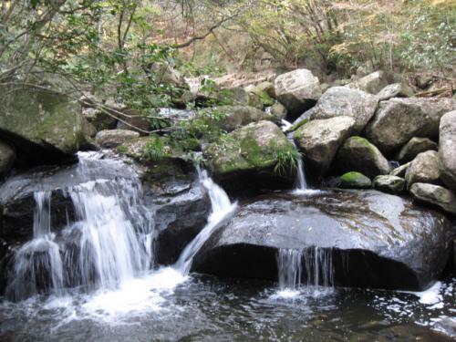20111114鳴滝森林公園
