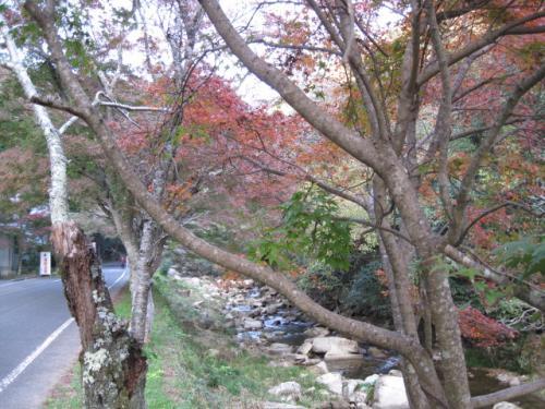 20111114豪溪