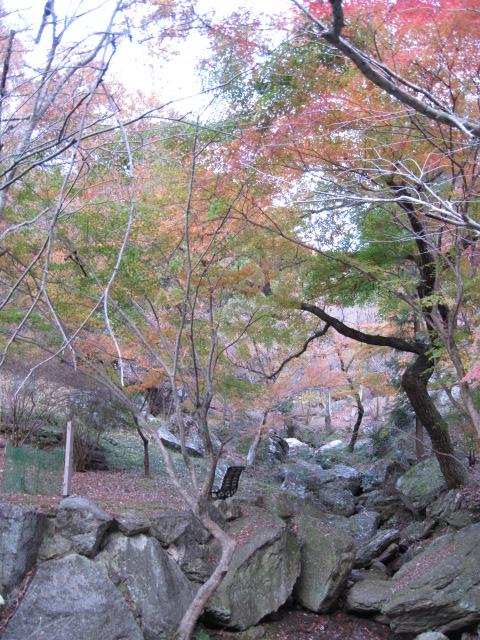 20111205東山公園
