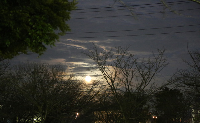 001-0-kumori-2.jpg