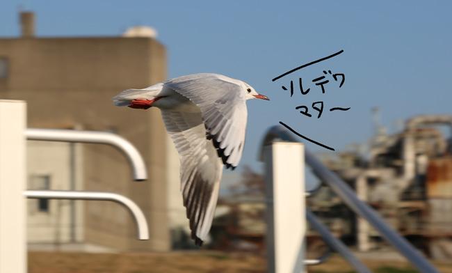 044-ake-7.jpg